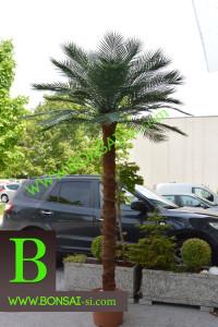 Künstliche Palme Dekopalme