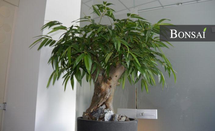 Kunstbaum Dekobaum handgefertigt Naturstamm