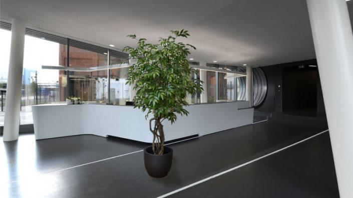 Kunstbaum Kunstbäume künstliche Bäume