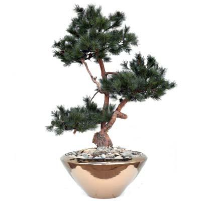 Künstlicher Bonsai Nadelbaum