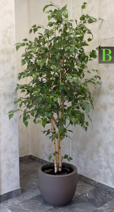 Kunstlicher Birkenbaum