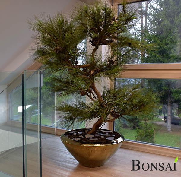 Kunstbaum Kunstlicher Bonsai