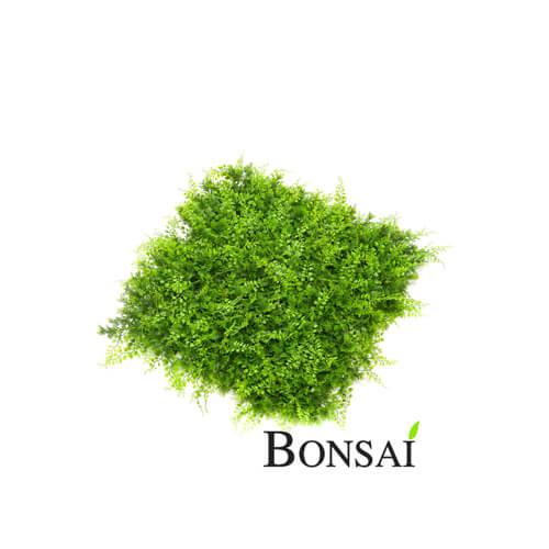 Green wall - grüne Wand Paneel 50x50cm UV Wetterfest