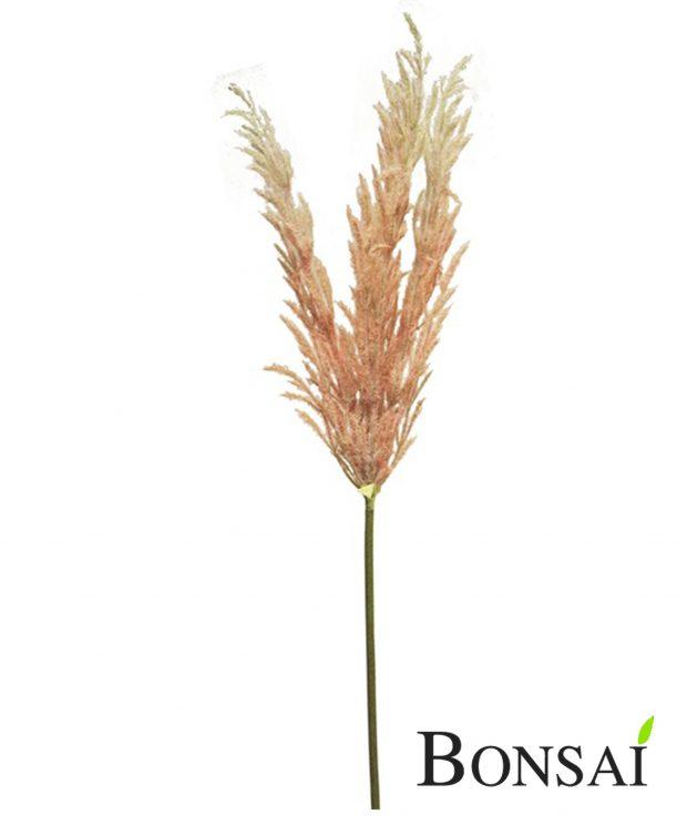 Pampas Grass Kunstgrass Pampasgrass