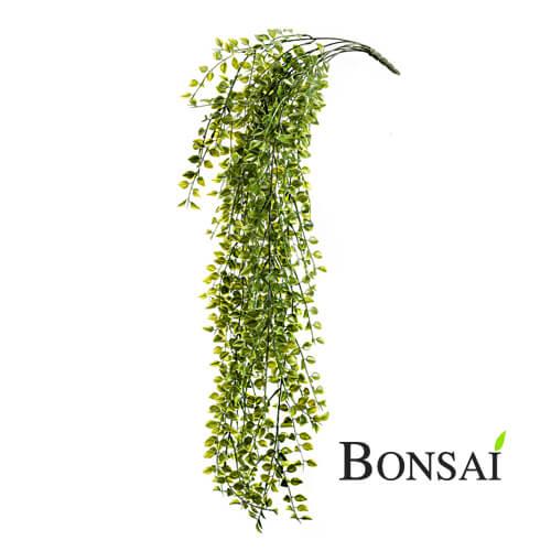 Hängepflanze Pumila Wetterfest 80cm