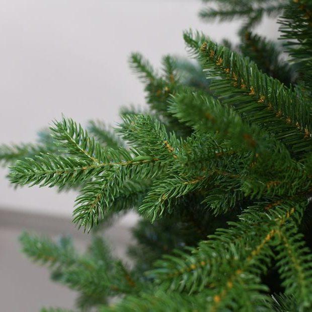 Weihnachtsbaum Toronto Zweig