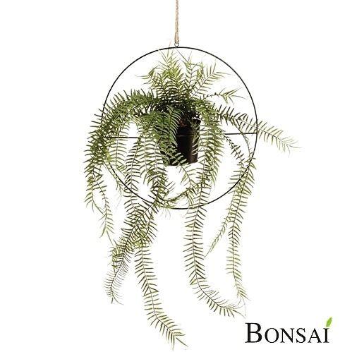 Kunstfarn im Ring   👉Jetzt mit 30% Rabat ⏰  https://bonsai-kunstblumen.de/produkt/kunstfarn-in-ring-90cm/